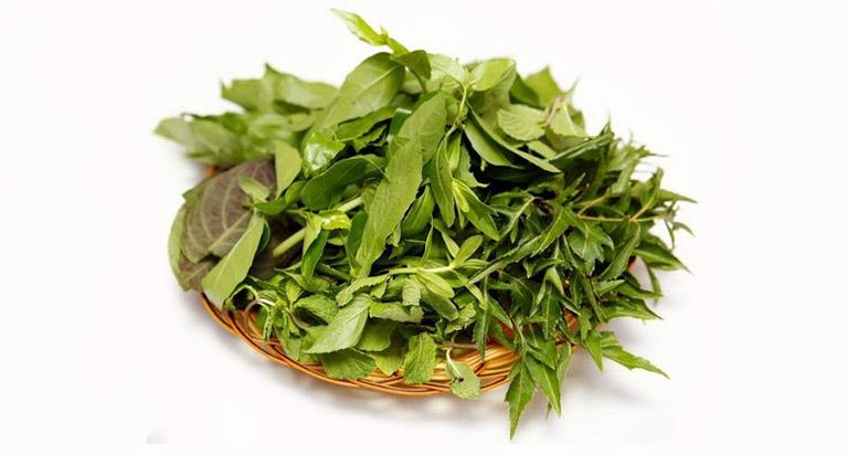 bài thuốc chữa bệnh mề đay bằng lá đinh lăng