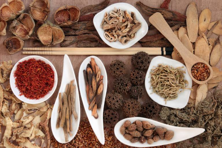 Chữa dị ứng cơ địa bằng các bài thuốc Đông y