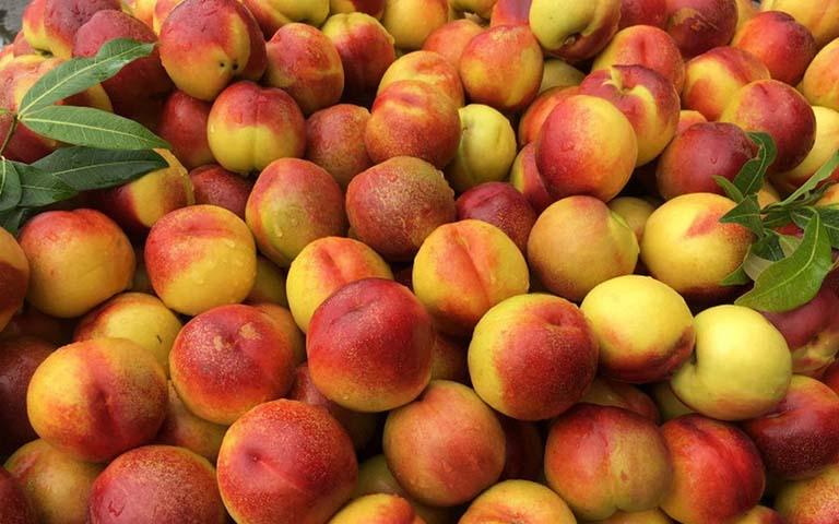 Đau dạ dày không nên ăn hoa quả gì