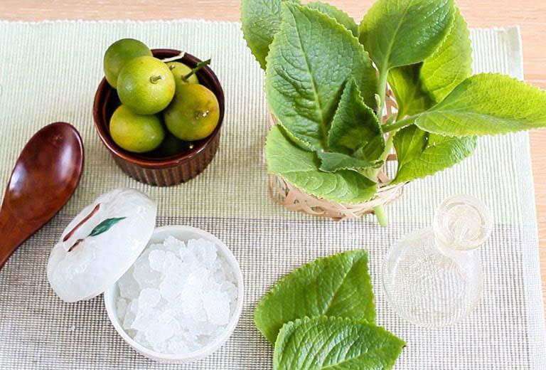 Cách trị ho bằng rau tần dày lá