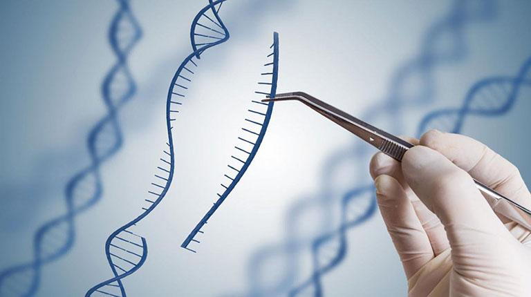 Top 3 địa chỉ xét nghiệm ADN tại Cần Thơ uy tín nhất