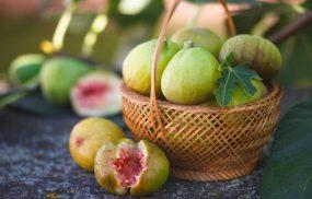 Chữa viêm loét dạ dày bằng quả sung có hiệu quả?