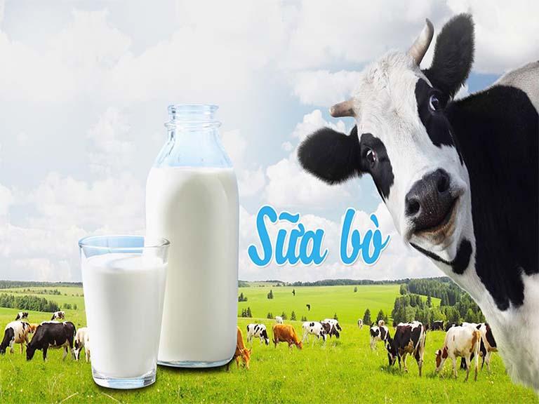 Bị thoái hóa cột sống nên uống sữa gì