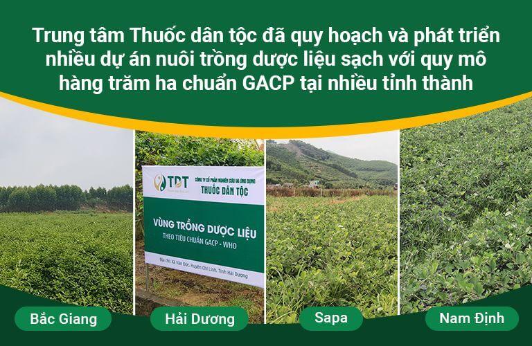 Hình ảnh vườn dược liệu sạch của Trung tâm Thuốc dân tộc
