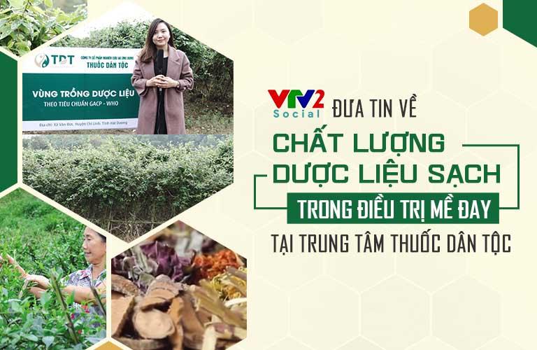 Hình ảnh vườn dược liệu sạch của Trung tâm Thuốc dân tộc được đưa tin trên VTV2