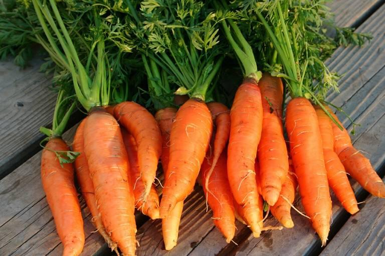 Củ cà rốt giàu vitamin, khoáng chất và chất chống oxy hóa, rất tốt cho sức khỏe dạ dày