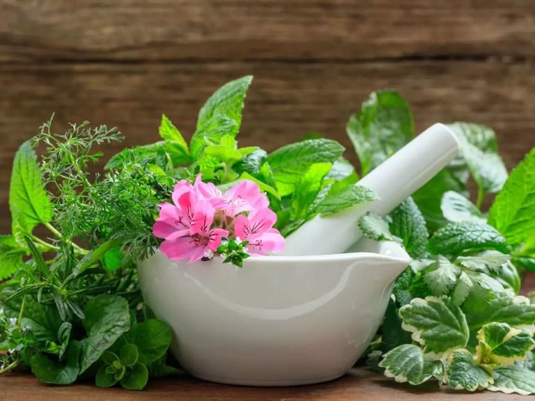 Áp dụng bài thuốc Đông y