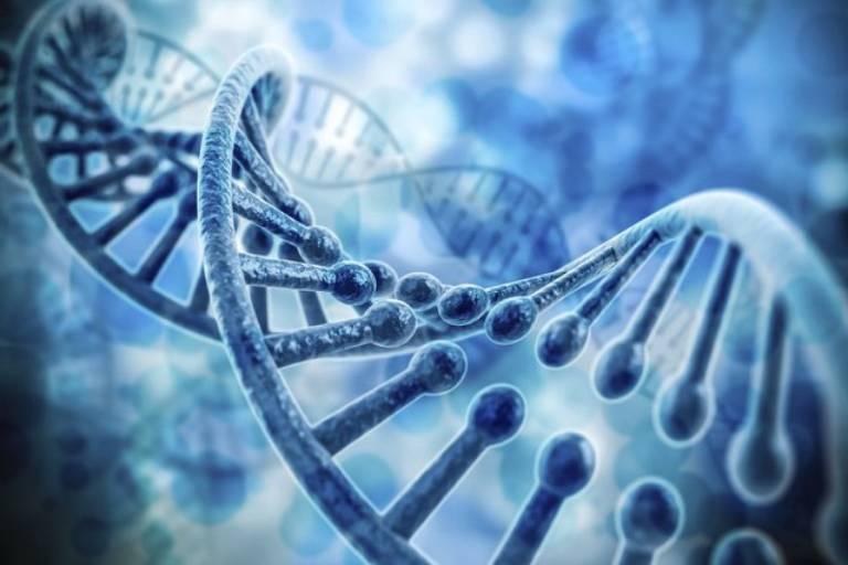 Hội chứng rối loạn ám ảnh sợ hãi có thể liên quan đến yếu tố di truyền